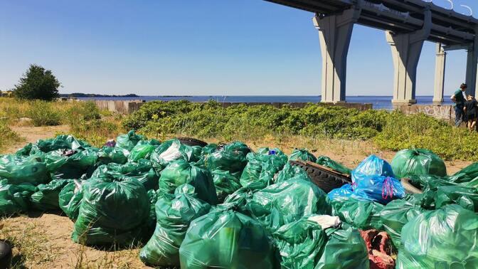 Итоги акции по уборке Канонерского острова